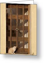 house keeper - A guardian cat is the best way to secure your home Greeting Card