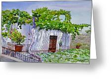 House With Vine In Lebanon Greeting Card