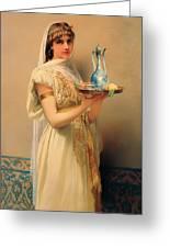 Housemaid  Greeting Card
