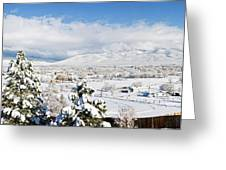 Houses And Trees Covered With Snow Greeting Card