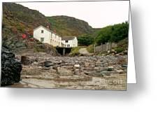 Houses At Kynance Cove Greeting Card
