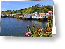 Houses On Stilts Greeting Card