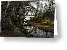 Houston Creek Greeting Card