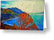 Hout Bay Greeting Card