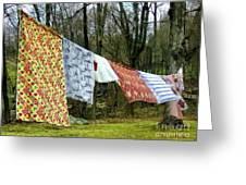 How To Dry An American Quilt Greeting Card