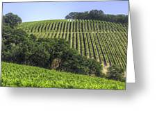 Howell Mountain Vineyards Greeting Card