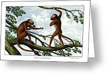 Howling Monkey Greeting Card