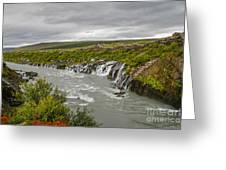 Hraunfossar Waterfall In Iceland Greeting Card