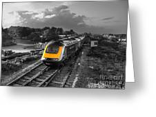 Hst At The Warren  Greeting Card
