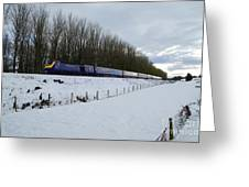 Hst In The Snow  Greeting Card