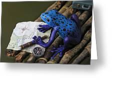 Huckleberry Frog II Greeting Card