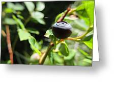 Huckleberry Greeting Card