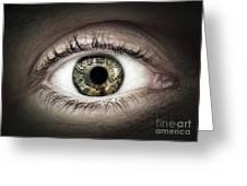 Human Eye Macro Greeting Card by Elena Elisseeva