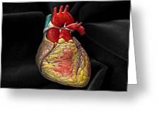 Human Heart On Black Velvet Greeting Card