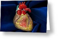 Human Heart On Blue Velvet Greeting Card