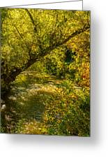 Humber River 5 Greeting Card