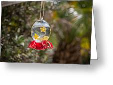 Hummer March 2015 Greeting Card