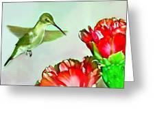 Humming Bird And Cactus Flowers Greeting Card