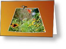 Humming Bird Out Of Bounds Greeting Card