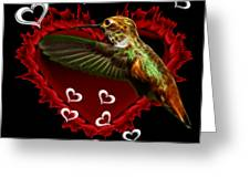 Hummingbird - 2055 F Greeting Card