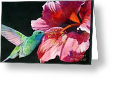 Hummingbird And Hibiscus Greeting Card by Robert Hooper