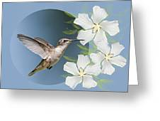 Hummingbird Heaven Greeting Card by Bonnie Barry