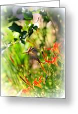 Hummingbird In The Daylilies Greeting Card