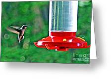 Hummingbird Love Greeting Card