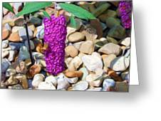 Hummingbird Moth At Dinnertime - Oil Painting    Greeting Card