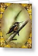 Hummingbird Noveau Greeting Card