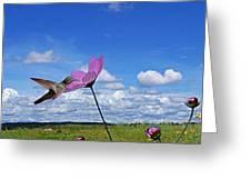 Hummingbird Panorama Greeting Card