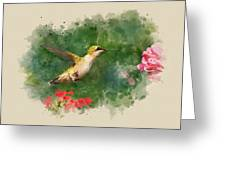 Hummingbird - Watercolor Art Greeting Card