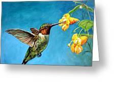 Hummingbird With Yellow Flowers Greeting Card