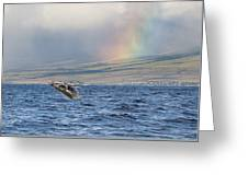 Humpback Whale And Rainbow Greeting Card