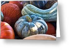 Humungous Edible Gourds Greeting Card