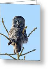 Hundred Mile Stare Greeting Card