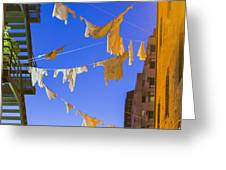 Hung Out To Dry 2 Greeting Card