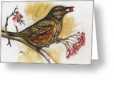 Hungry Thrush Greeting Card