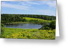 Hunter River Beauty Greeting Card