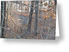 Hunters Warming Hut Greeting Card