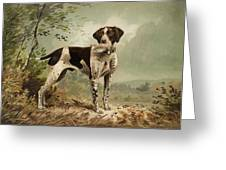 Hunting Dog Circa 1879 Greeting Card by Aged Pixel
