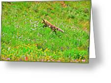 Hunting Fox Greeting Card