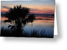 Hunting Isalnd Tidal Marsh Greeting Card by Mountains to the Sea Photo