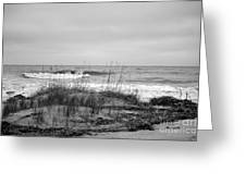 Hunting Island Beach In Black And White Greeting Card