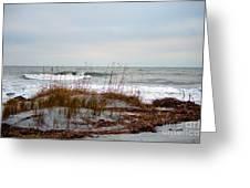 Hunting Island Beach Greeting Card