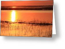Hunting Island Tidal Marsh Greeting Card by Mountains to the Sea Photo