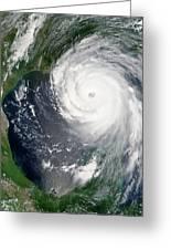 Hurricane Katrina Greeting Card