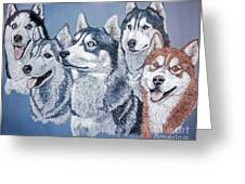 Huskies By J. Belter Garfunkel Greeting Card