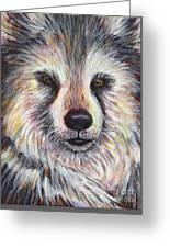 Husky Wolf Greeting Card