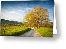 Hyatt Lane Cade's Cove Great Smoky Mountains National Park Greeting Card
